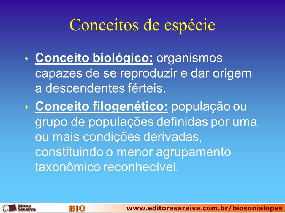 Conceitos de espécie s Conceito biológico: organismos capazes de se reproduzir e dar origem a descendentes férteis. s Conceito filogenético: população