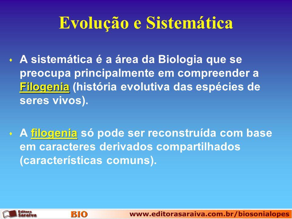 Evolução e Sistemática Filogenia s A sistemática é a área da Biologia que se preocupa principalmente em compreender a Filogenia (história evolutiva da