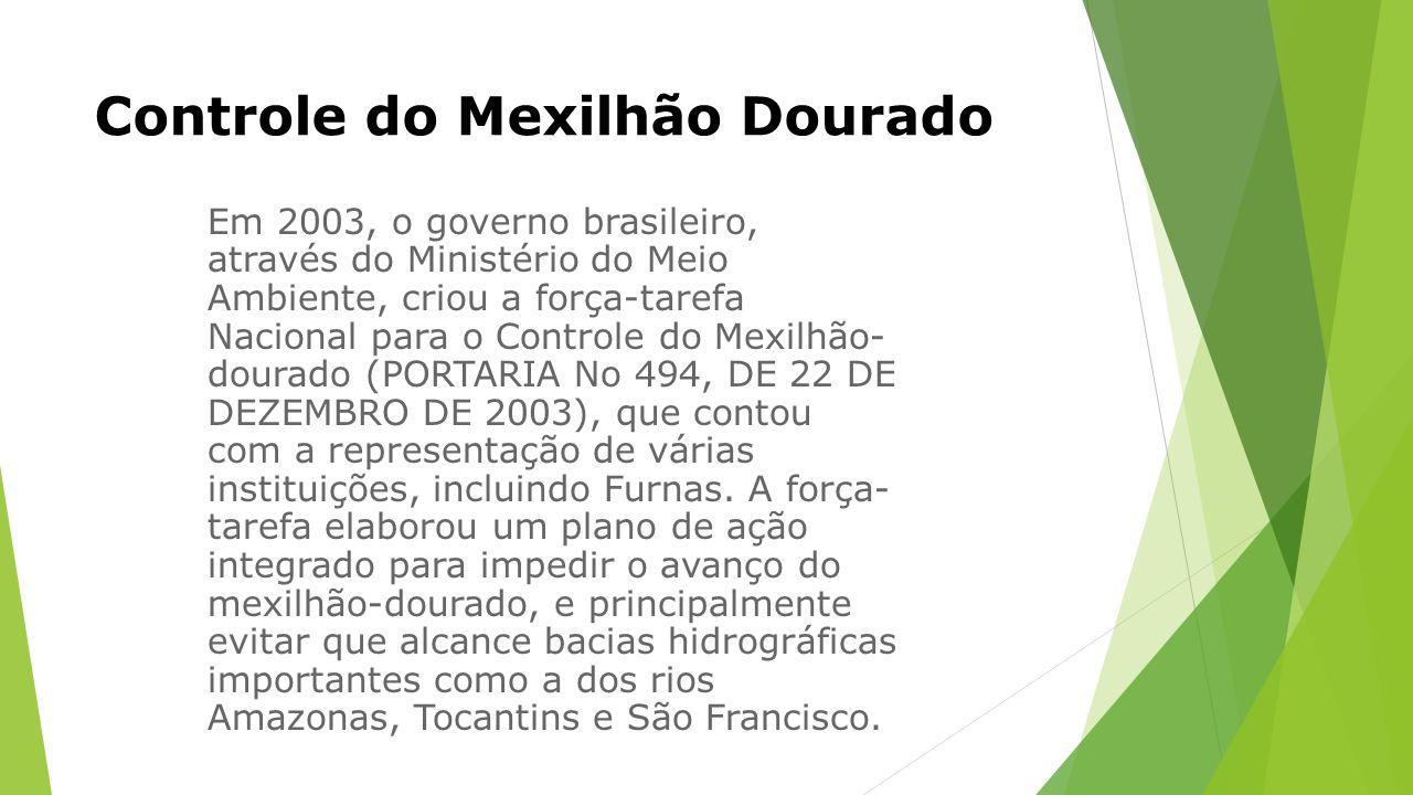 Controle do Mexilhão Dourado Em 2003, o governo brasileiro, através do Ministério do Meio Ambiente, criou a força-tarefa Nacional para o Controle do Mexilhão- dourado (PORTARIA No 494, DE 22 DE DEZEMBRO DE 2003), que contou com a representação de várias instituições, incluindo Furnas.