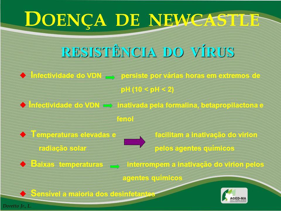 D OENÇA DE NEWCASTLE  I nfectividade do VDN persiste por várias horas em extremos de pH (10 < pH < 2)  I nfectividade do VDN inativada pela formalin