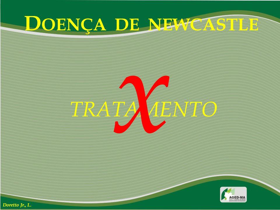 D OENÇA DE NEWCASTLE TRATAMENTO x Doretto Jr., L.