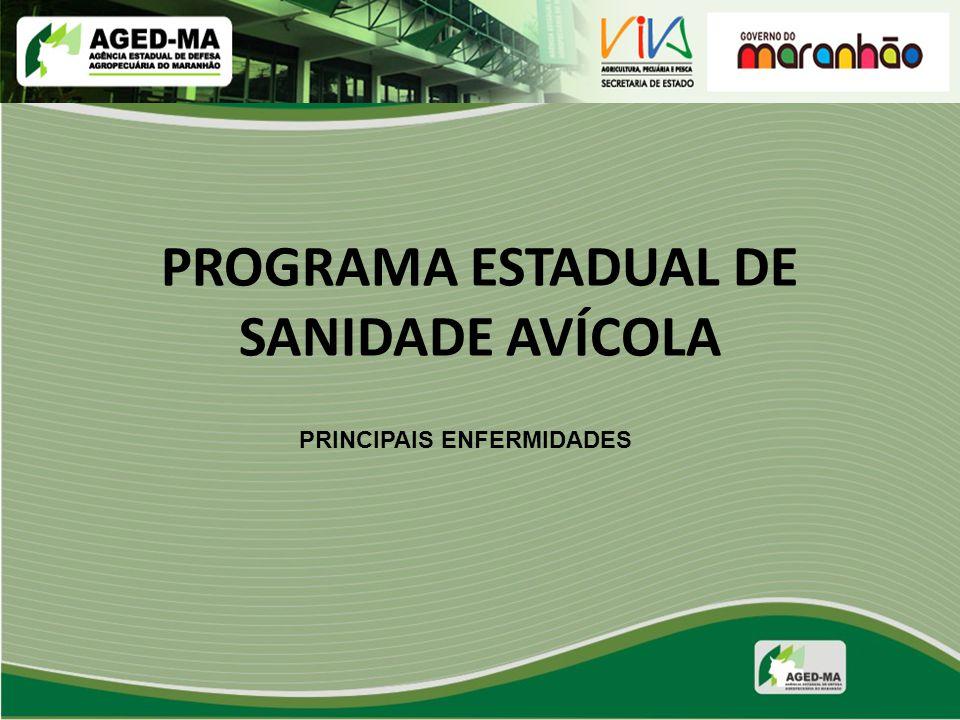 PROGRAMA ESTADUAL DE SANIDADE AVÍCOLA PRINCIPAIS ENFERMIDADES