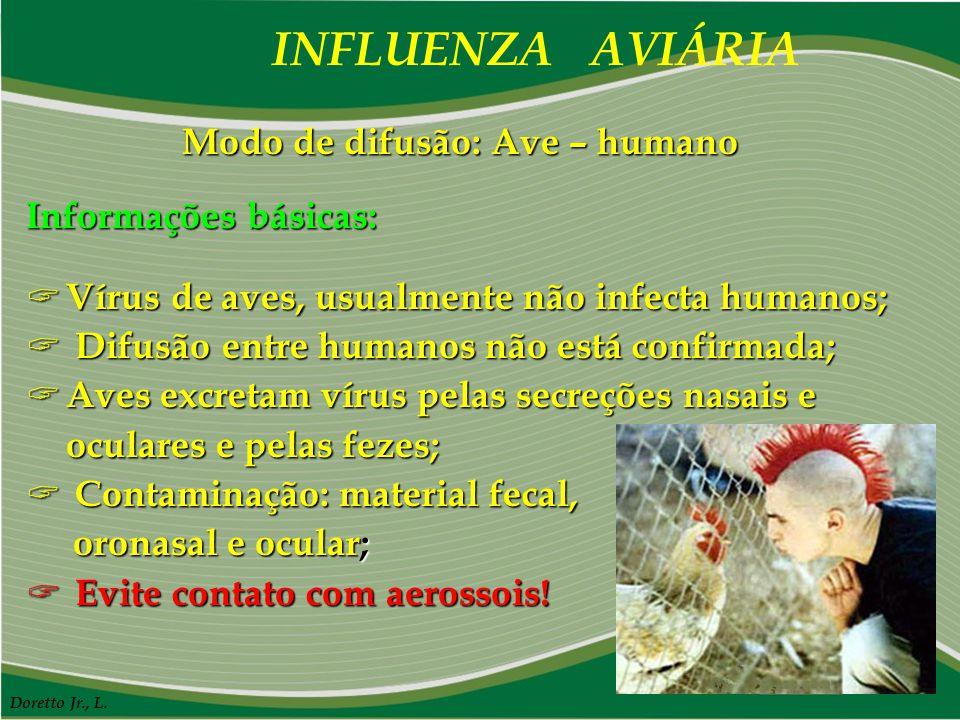 INFLUENZA AVIÁRIA Doretto Jr., L. Modo de difusão: Ave – humano Informações básicas:  Vírus de aves, usualmente não infecta humanos;  Difusão entre