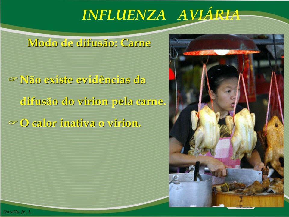 INFLUENZA AVIÁRIA Doretto Jr., L. Modo de difusão: Carne  Não existe evidências da difusão do virion pela carne.  O calor inativa o virion.
