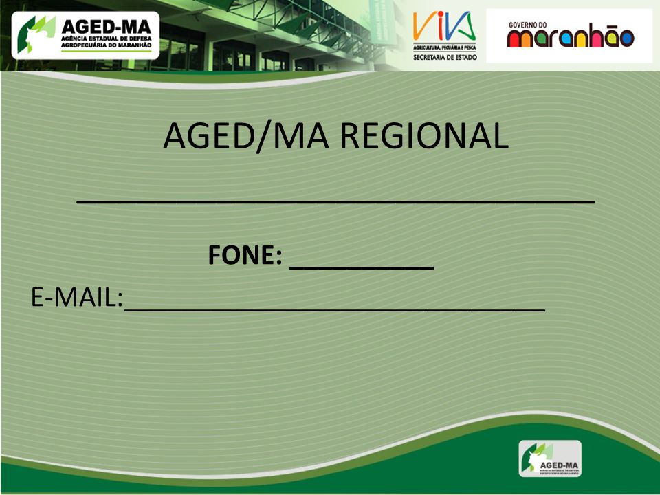 FONE: __________ E-MAIL:_____________________________ AGED/MA REGIONAL __________________________