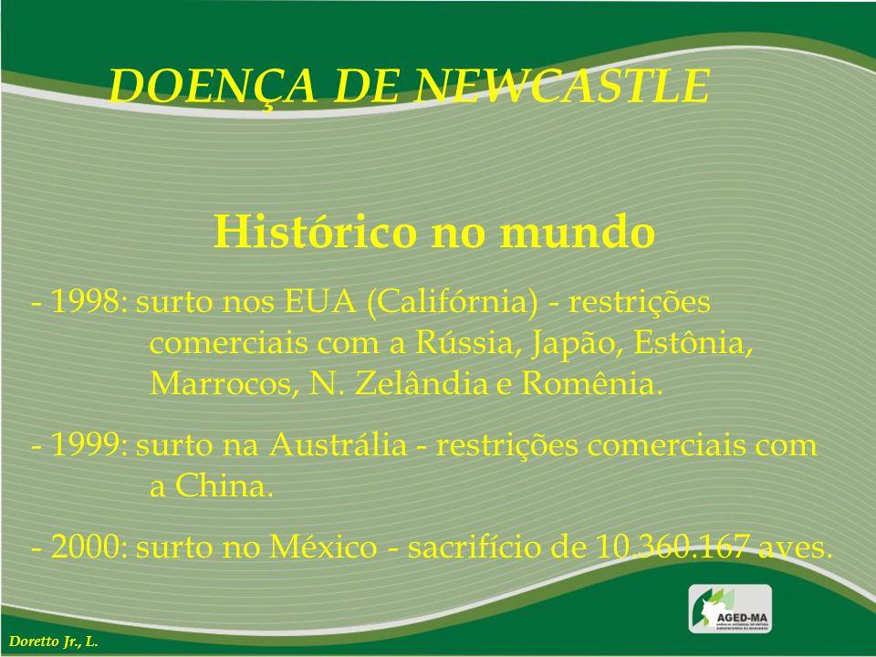DOENÇA DE NEWCASTLE Histórico no mundo - 1998: surto nos EUA (Califórnia) - restrições comerciais com a Rússia, Japão, Estônia, Marrocos, N. Zelândia
