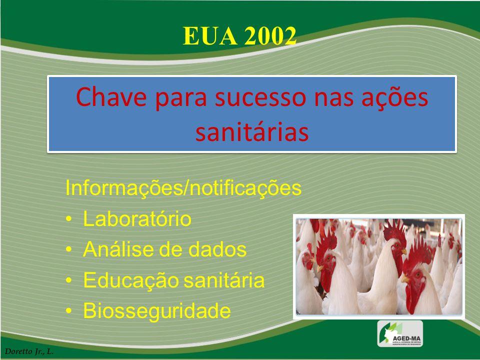 Chave para sucesso nas ações sanitárias Informações/notificações Laboratório Análise de dados Educação sanitária Biosseguridade EUA 2002 Doretto Jr.,