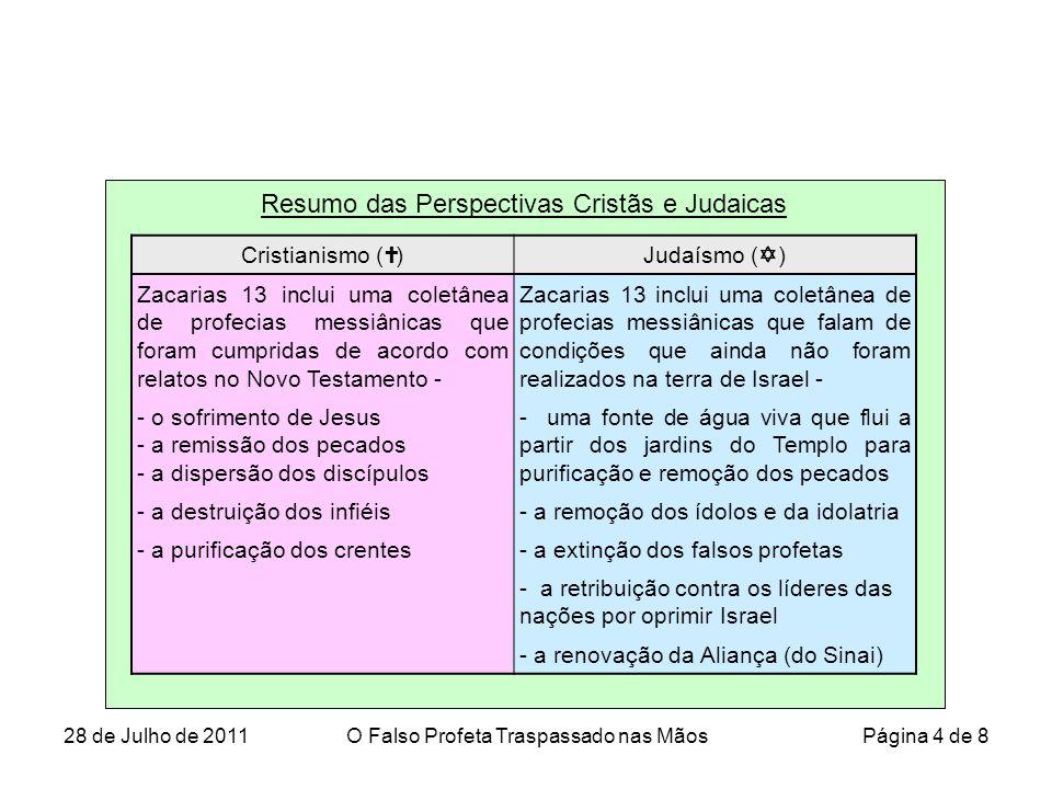 Resumo das Perspectivas Cristãs e Judaicas Cristianismo (  )Judaísmo (  ) Zacarias 13 inclui uma coletânea de profecias messiânicas que foram cumpridas de acordo com relatos no Novo Testamento - Zacarias 13 inclui uma coletânea de profecias messiânicas que falam de condições que ainda não foram realizados na terra de Israel - - o sofrimento de Jesus - a remissão dos pecados - a dispersão dos discípulos - uma fonte de água viva que flui a partir dos jardins do Templo para purificação e remoção dos pecados - a destruição dos infiéis- a remoção dos ídolos e da idolatria - a purificação dos crentes- a extinção dos falsos profetas - a retribuição contra os líderes das nações por oprimir Israel - a renovação da Aliança (do Sinai) 28 de Julho de 2011O Falso Profeta Traspassado nas Mãos Página 4 de 8