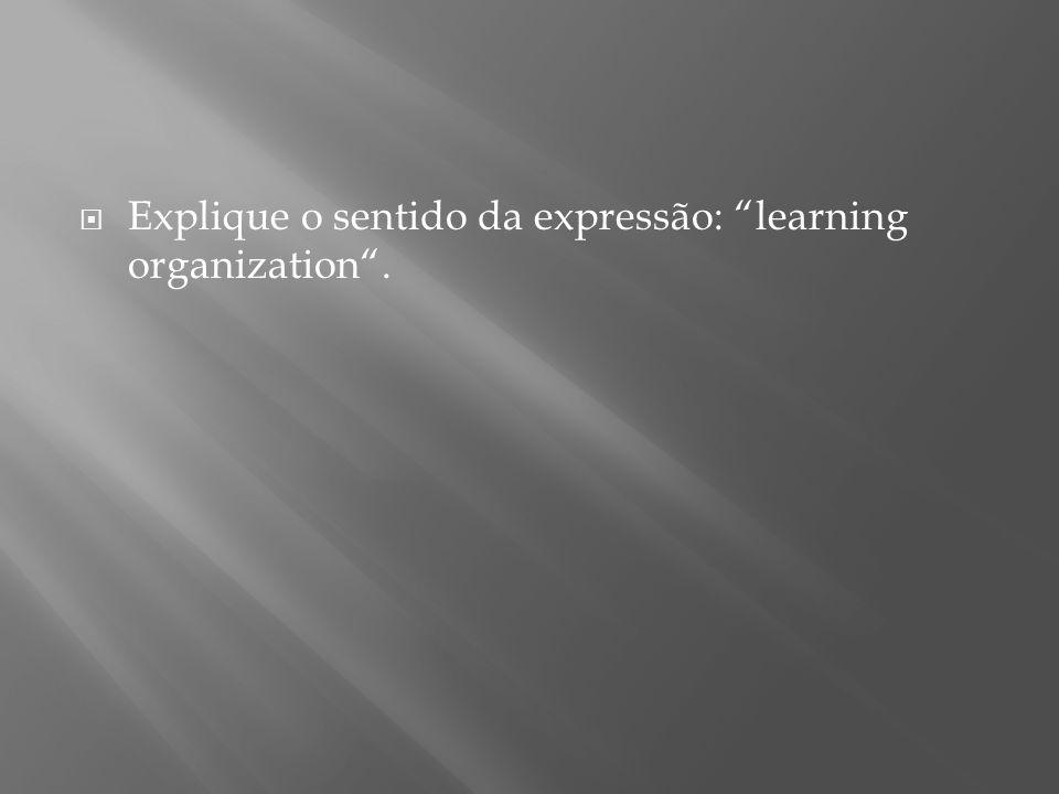 """ Explique o sentido da expressão: """"learning organization""""."""