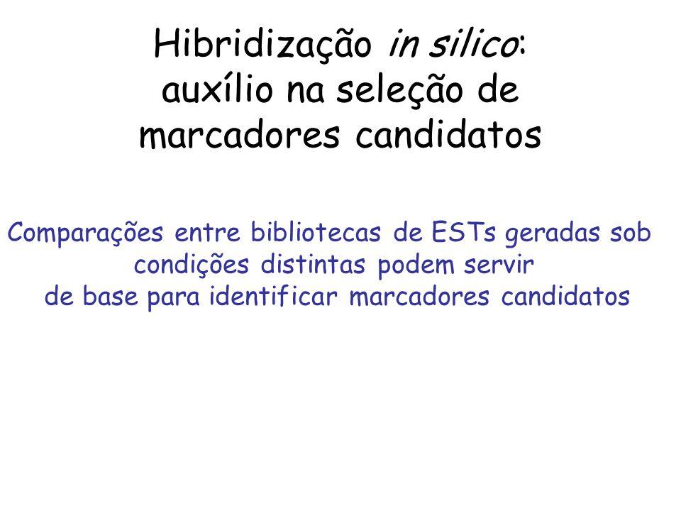 Hibridização in silico: auxílio na seleção de marcadores candidatos Comparações entre bibliotecas de ESTs geradas sob condições distintas podem servir