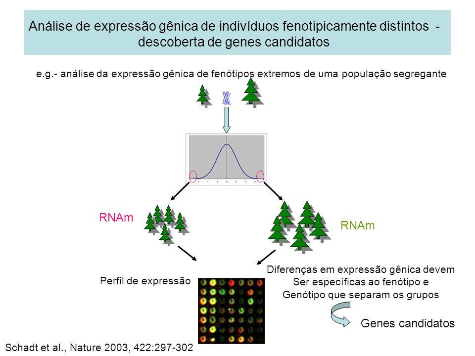 Análise de expressão gênica de indivíduos fenotipicamente distintos - descoberta de genes candidatos e.g.- análise da expressão gênica de fenótipos ex