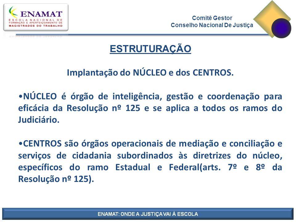 Comitê Gestor Conselho Nacional De Justiça ESTRUTURAÇÃO Implantação do NÚCLEO e dos CENTROS.