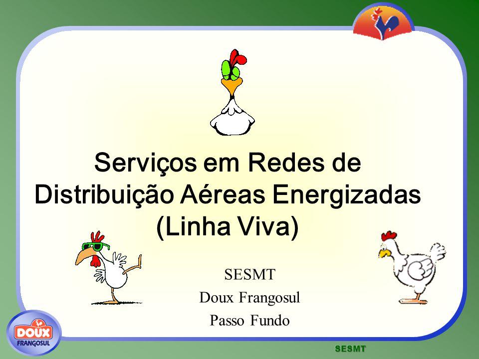 Serviços em Redes de Distribuição Aéreas Energizadas (Linha Viva) SESMT Doux Frangosul Passo Fundo