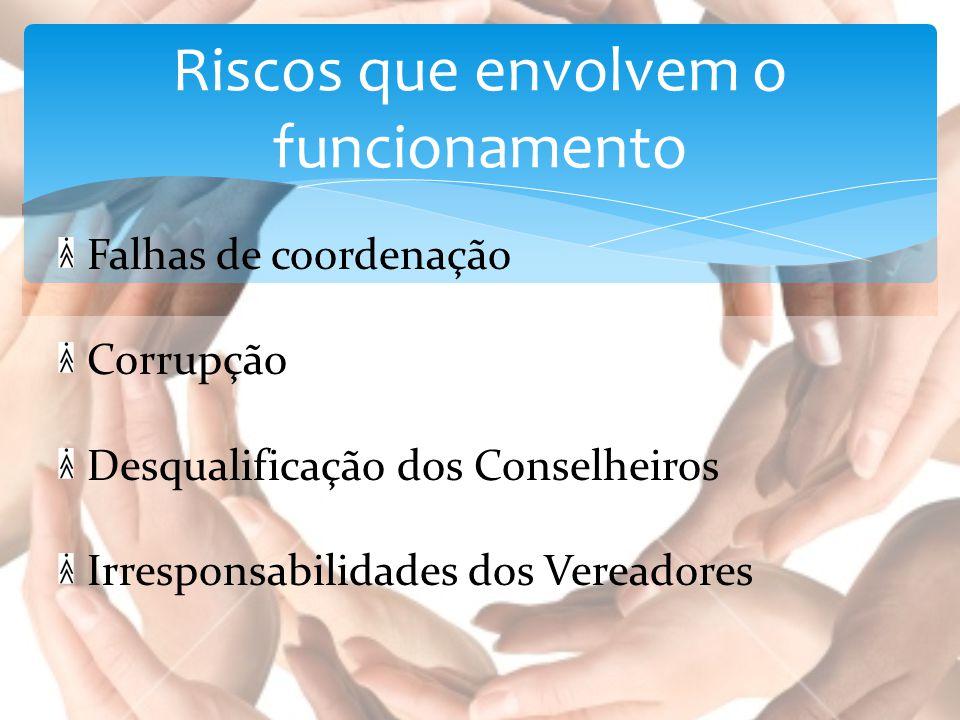 Falhas de coordenação Corrupção Desqualificação dos Conselheiros Irresponsabilidades dos Vereadores Riscos que envolvem o funcionamento