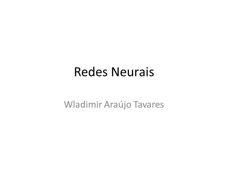 Redes Neurais Wladimir Araújo Tavares