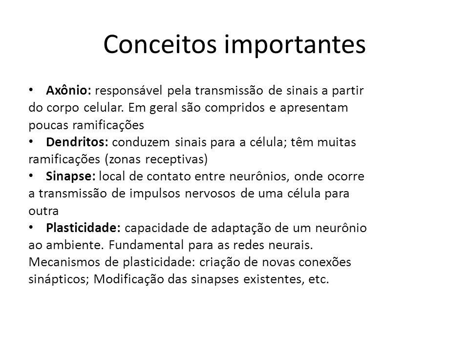 Conceitos importantes Axônio: responsável pela transmissão de sinais a partir do corpo celular. Em geral são compridos e apresentam poucas ramificaçõe