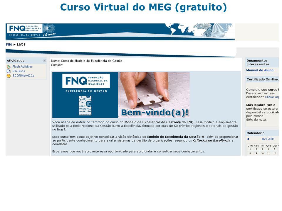 27 Curso Virtual do MEG (gratuito)