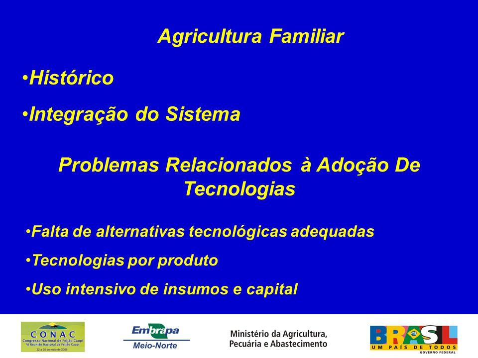 Problemas Relacionados à Adoção De Tecnologias Falta de alternativas tecnológicas adequadas Tecnologias por produto Uso intensivo de insumos e capital Histórico Integração do Sistema Agricultura Familiar