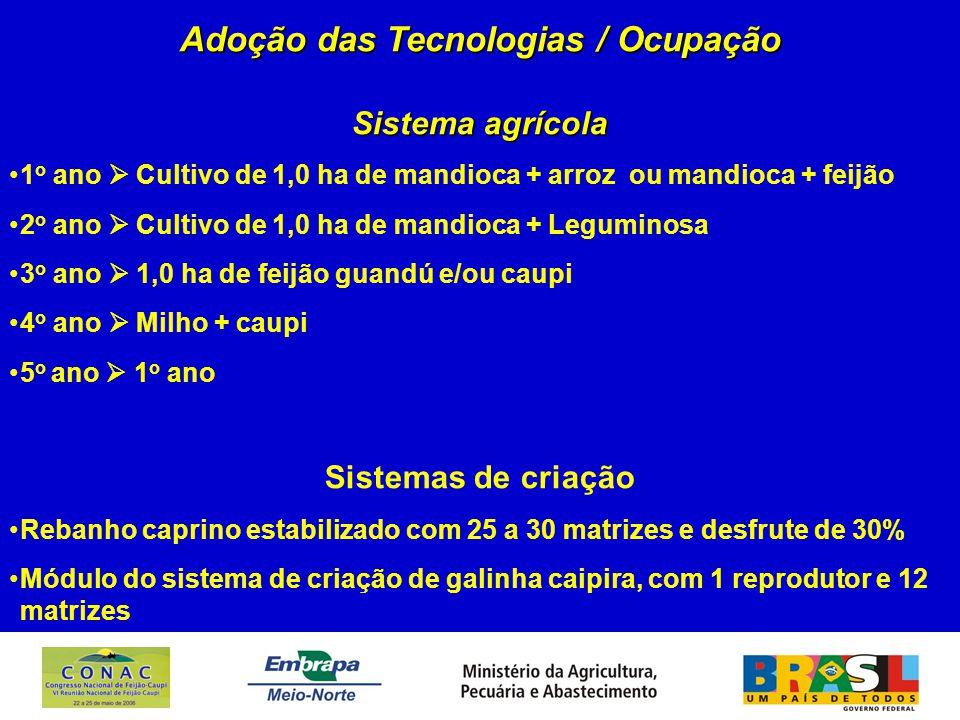 Adoção das Tecnologias / Ocupação Sistema agrícola 1 o ano  Cultivo de 1,0 ha de mandioca + arroz ou mandioca + feijão 2 o ano  Cultivo de 1,0 ha de