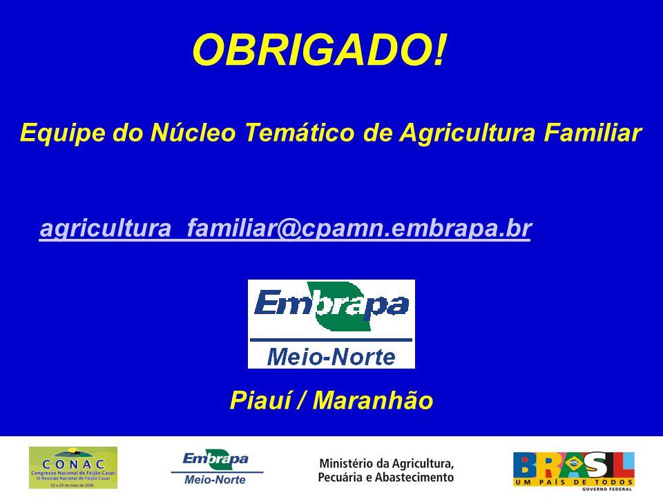 OBRIGADO! Equipe do Núcleo Temático de Agricultura Familiar agricultura_familiar@cpamn.embrapa.br Piauí / Maranhão