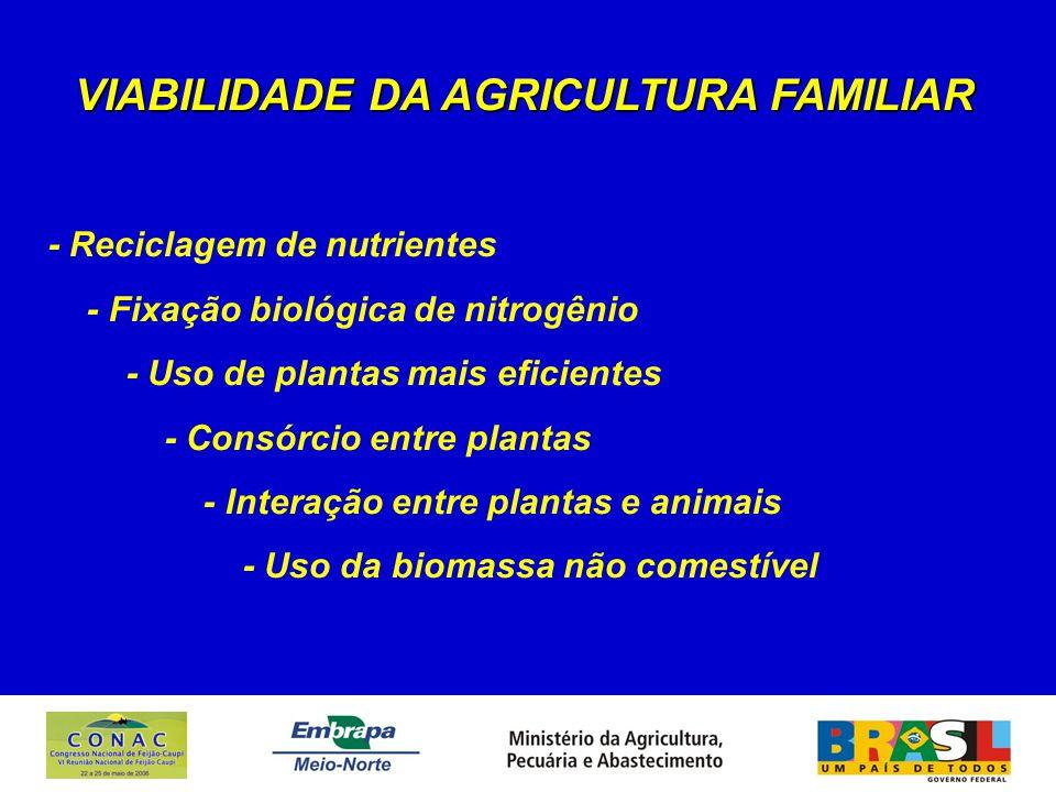 VIABILIDADE DA AGRICULTURA FAMILIAR - Reciclagem de nutrientes - Fixação biológica de nitrogênio - Uso de plantas mais eficientes - Consórcio entre plantas - Interação entre plantas e animais - Uso da biomassa não comestível