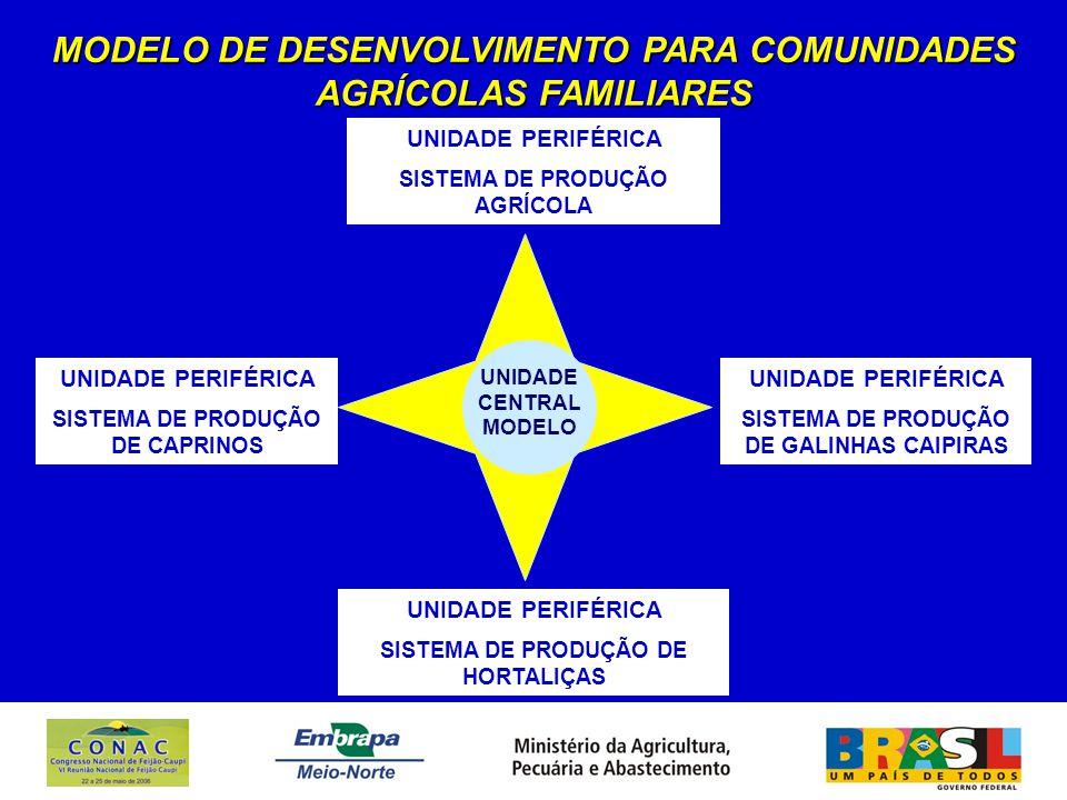 MODELO DE DESENVOLVIMENTO PARA COMUNIDADES AGRÍCOLAS FAMILIARES UNIDADE CENTRAL MODELO UNIDADE PERIFÉRICA SISTEMA DE PRODUÇÃO AGRÍCOLA UNIDADE PERIFÉRICA SISTEMA DE PRODUÇÃO DE HORTALIÇAS UNIDADE PERIFÉRICA SISTEMA DE PRODUÇÃO DE CAPRINOS UNIDADE PERIFÉRICA SISTEMA DE PRODUÇÃO DE GALINHAS CAIPIRAS