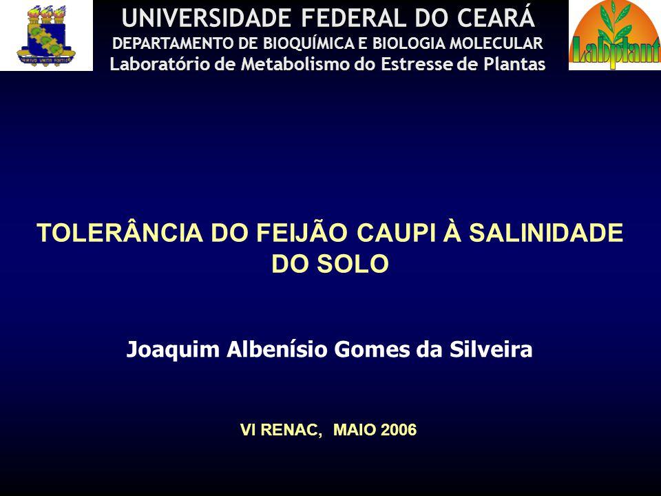 TOLERÂNCIA DO FEIJÃO CAUPI À SALINIDADE DO SOLO Joaquim Albenísio Gomes da Silveira UNIVERSIDADE FEDERAL DO CEARÁ DEPARTAMENTO DE BIOQUÍMICA E BIOLOGI