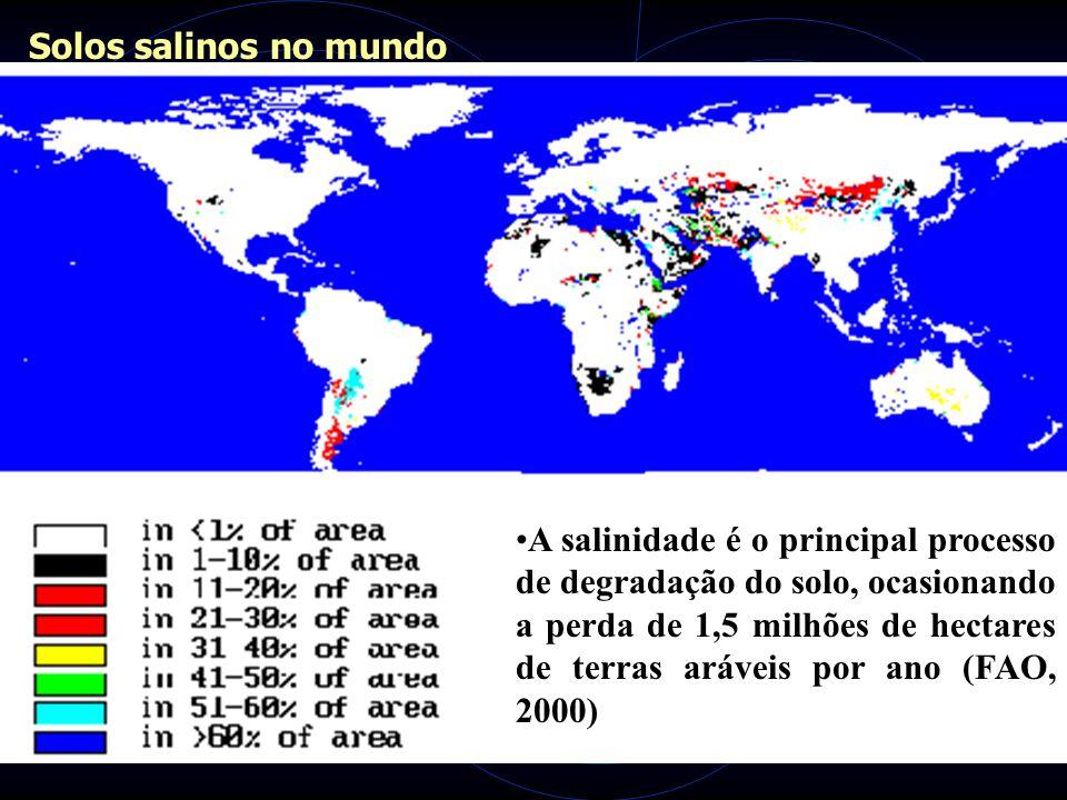 Solos salinos no mundo A salinidade é o principal processo de degradação do solo, ocasionando a perda de 1,5 milhões de hectares de terras aráveis por