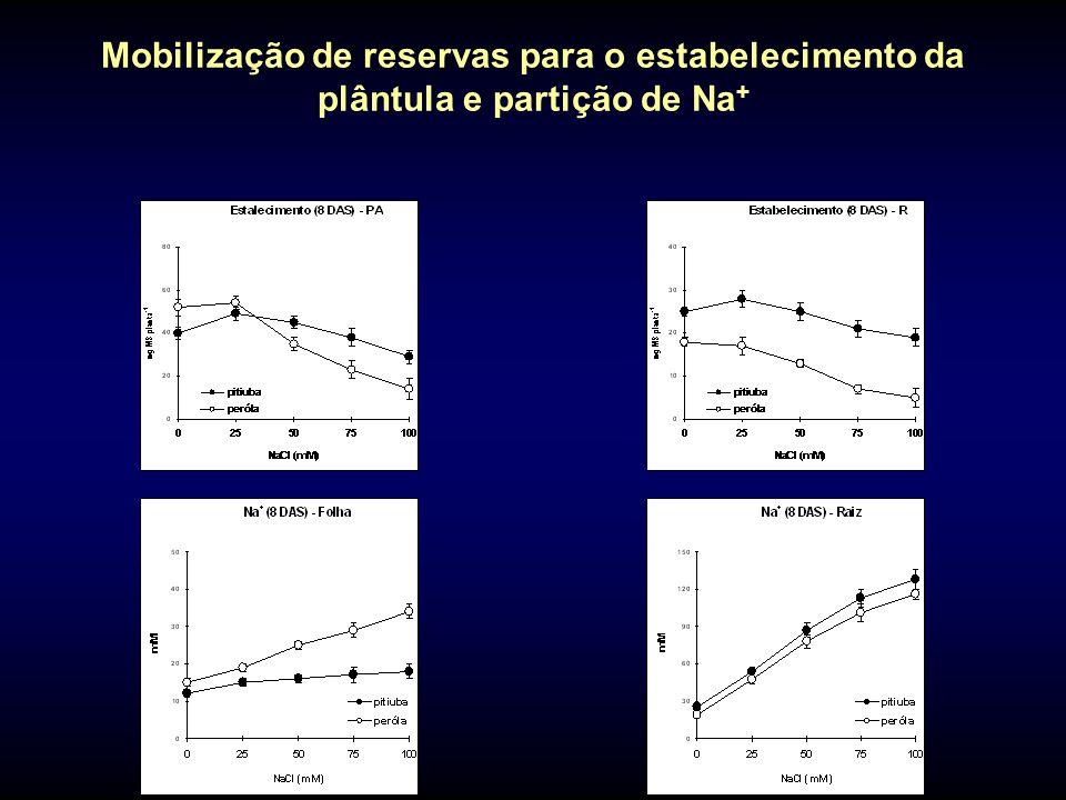 Mobilização de reservas para o estabelecimento da plântula e partição de Na +