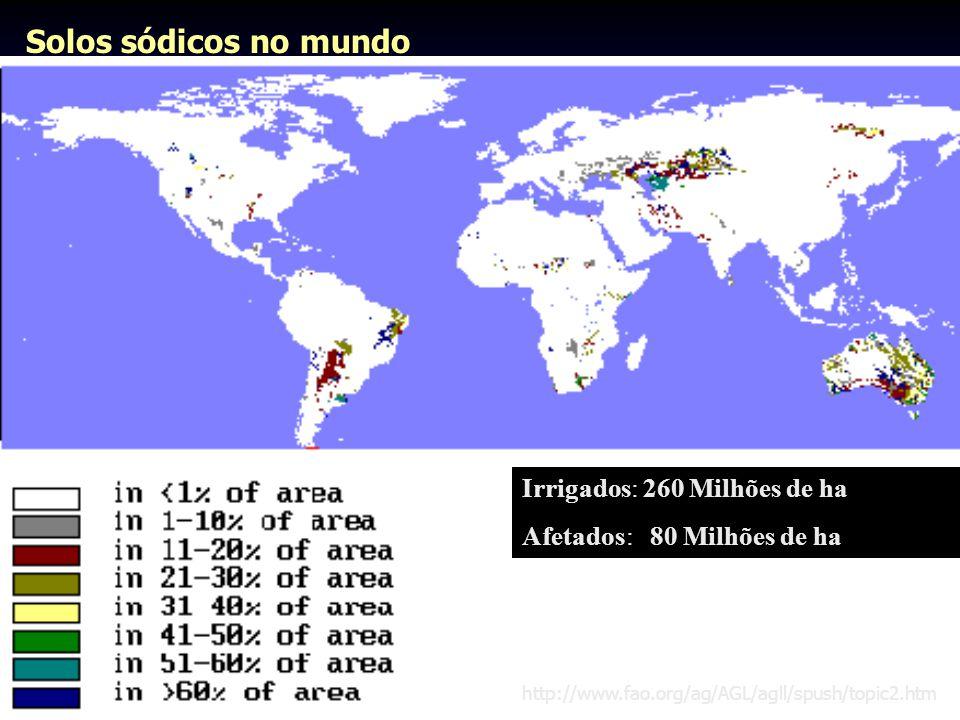 Solos sódicos no mundo Irrigados: 260 Milhões de ha Afetados: 80 Milhões de ha http://www.fao.org/ag/AGL/agll/spush/topic2.htm