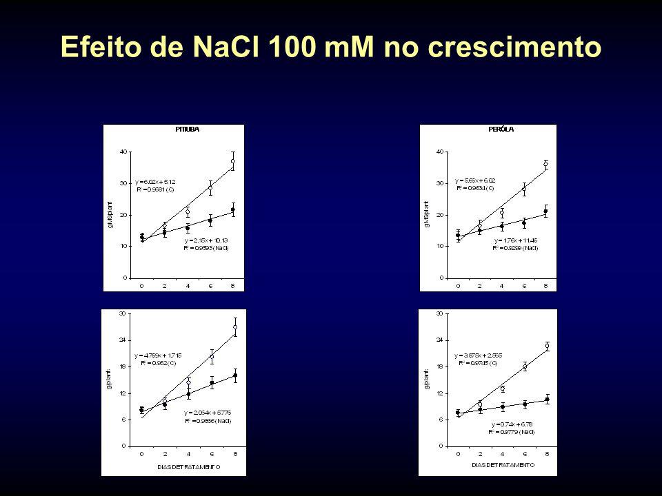 Efeito de NaCl 100 mM no crescimento