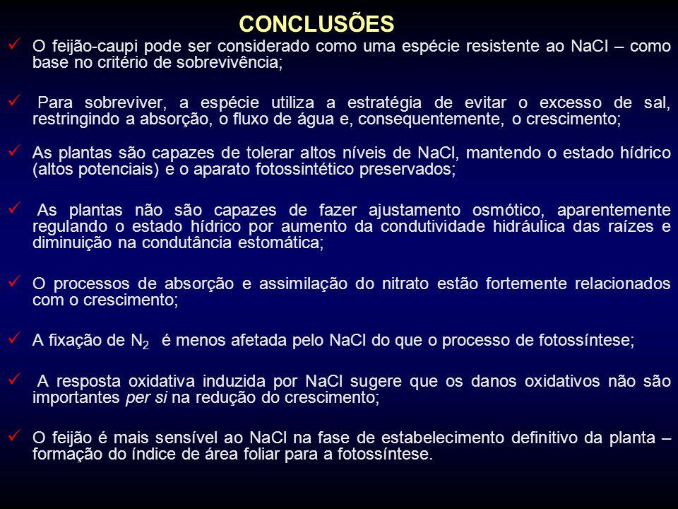 CONCLUSÕES O feijão-caupi pode ser considerado como uma espécie resistente ao NaCl – como base no critério de sobrevivência; Para sobreviver, a espéci