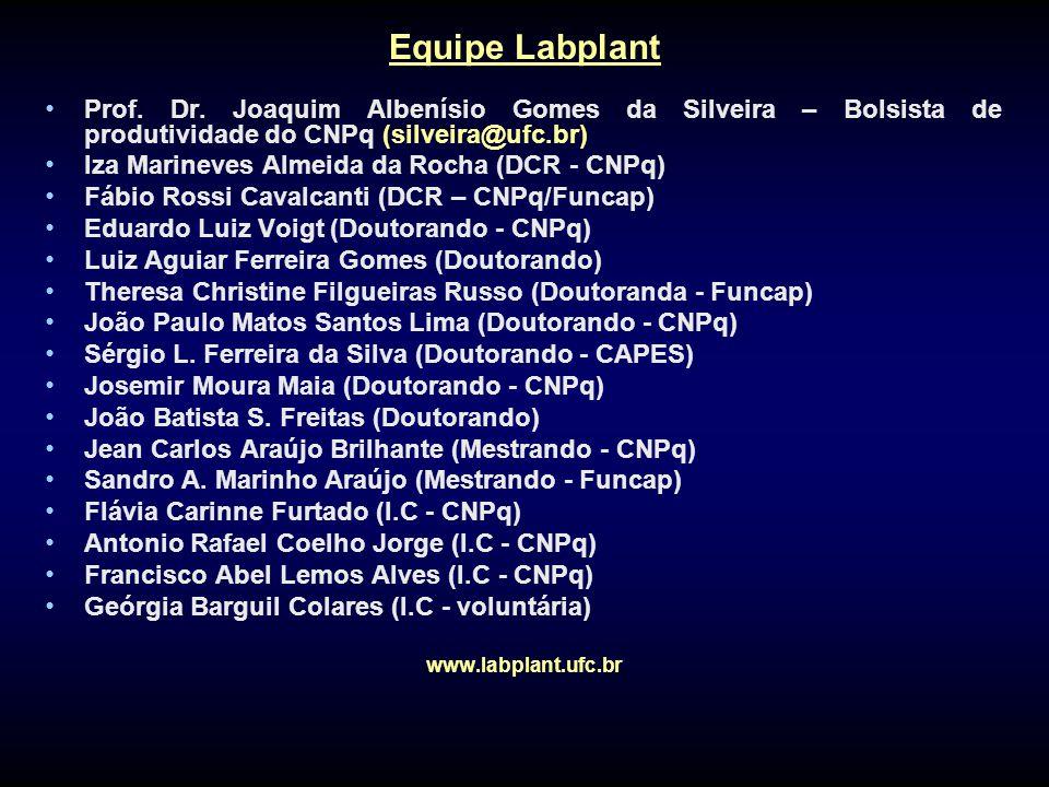 Equipe Labplant Prof. Dr. Joaquim Albenísio Gomes da Silveira – Bolsista de produtividade do CNPq (silveira@ufc.br) Iza Marineves Almeida da Rocha (DC