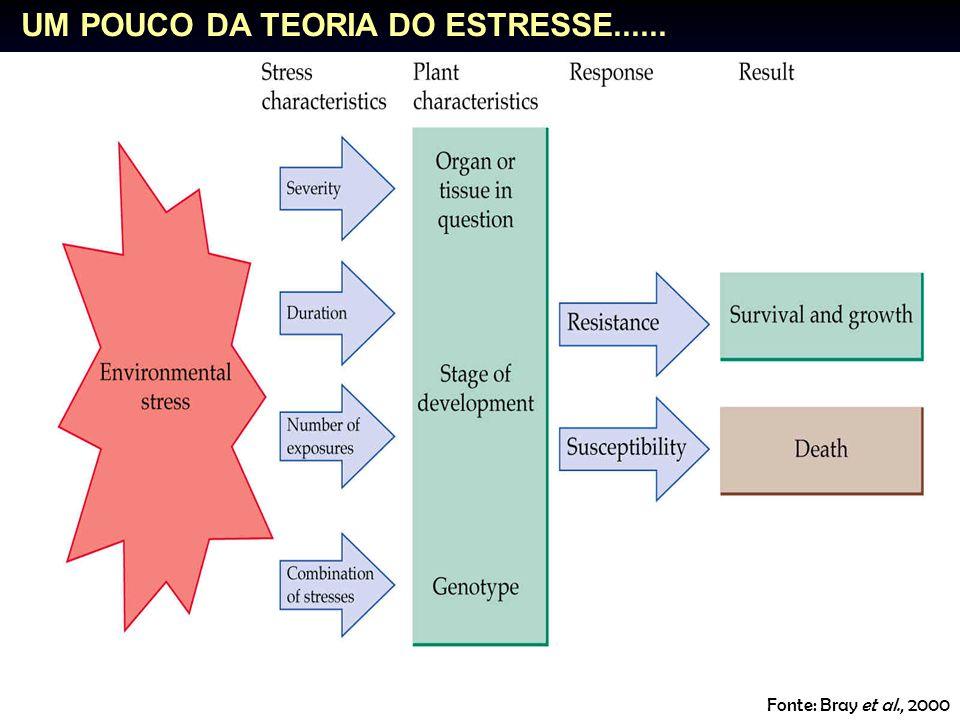 Fonte: Bray et al., 2000 UM POUCO DA TEORIA DO ESTRESSE......