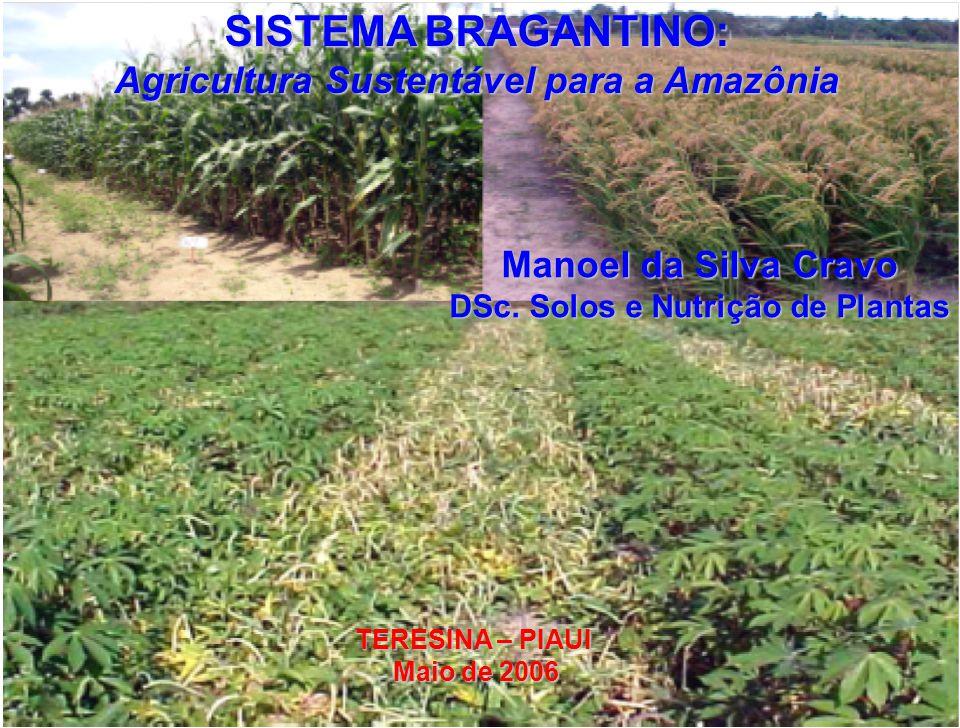 SISTEMA BRAGANTINO: Agricultura Sustentável para a Amazônia Manoel da Silva Cravo DSc. Solos e Nutrição de Plantas TERESINA – PIAUI Maio de 2006