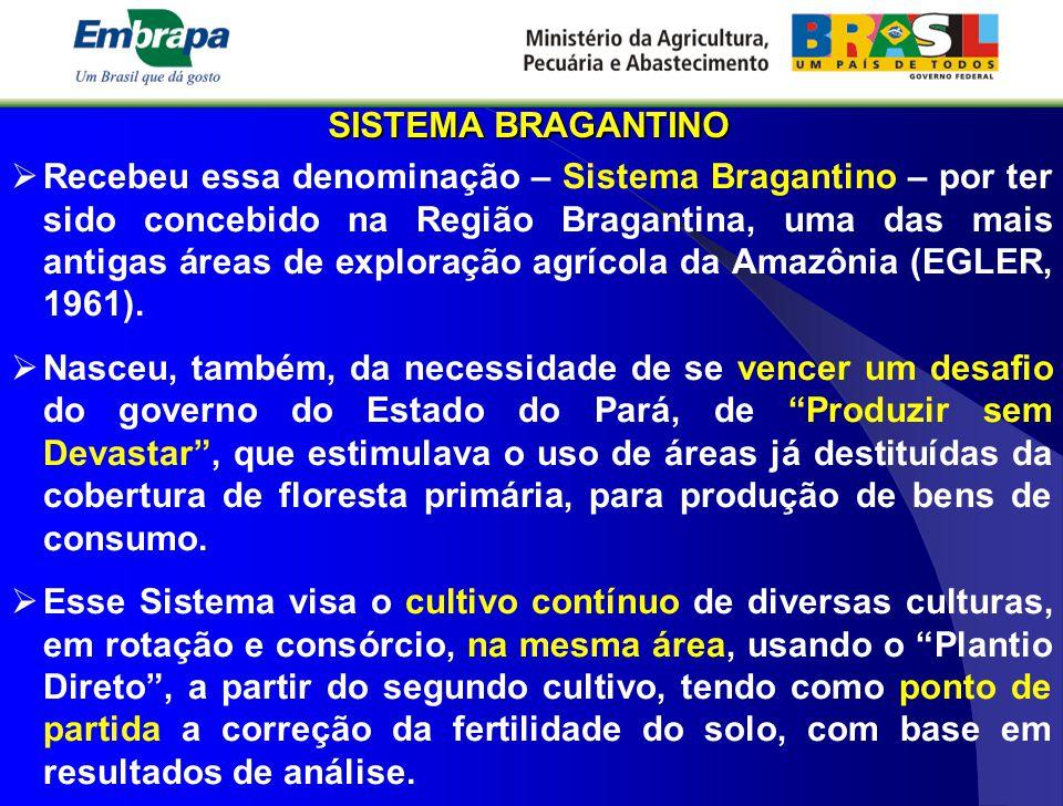 SISTEMA BRAGANTINO  Recebeu essa denominação – Sistema Bragantino – por ter sido concebido na Região Bragantina, uma das mais antigas áreas de explor