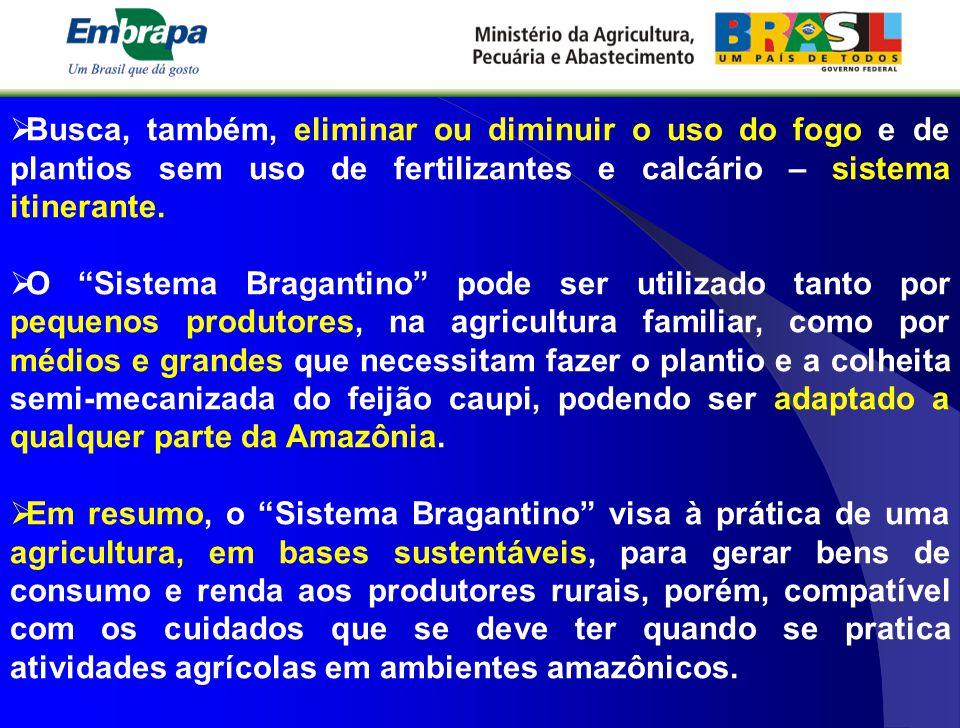 """ Busca, também, eliminar ou diminuir o uso do fogo e de plantios sem uso de fertilizantes e calcário – sistema itinerante.  O """"Sistema Bragantino"""" p"""