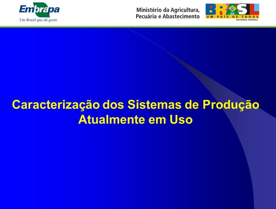 Caracterização dos Sistemas de Produção Atualmente em Uso