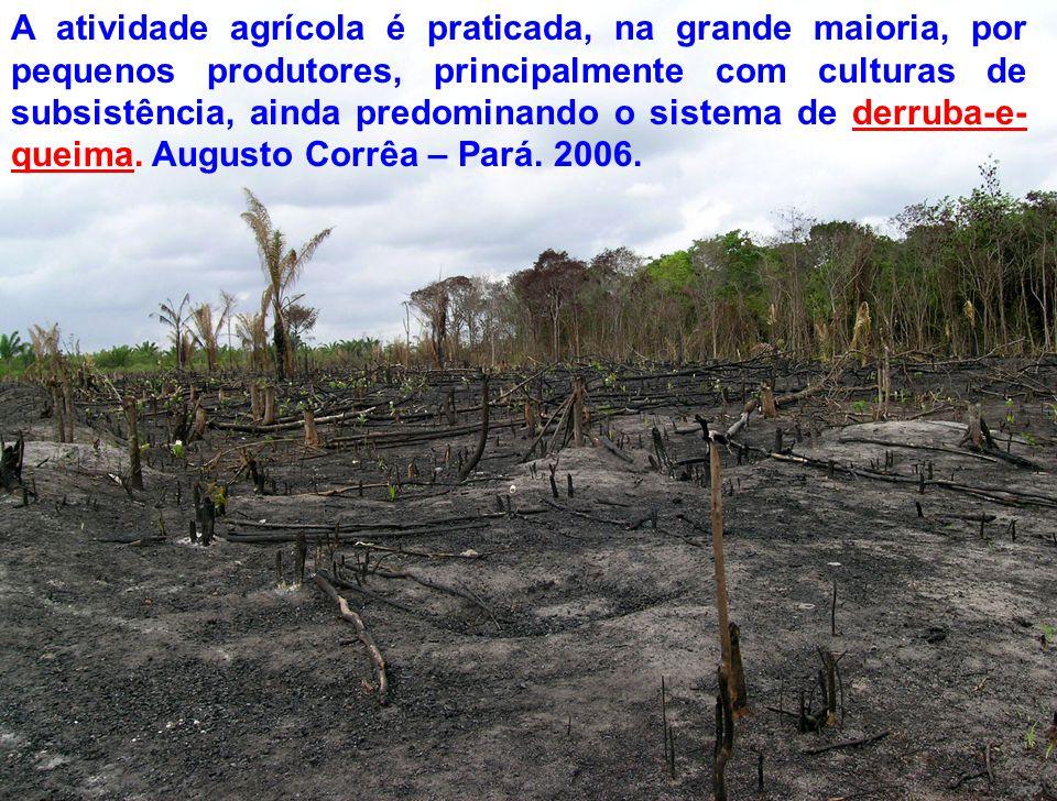 A atividade agrícola é praticada, na grande maioria, por pequenos produtores, principalmente com culturas de subsistência, ainda predominando o sistem