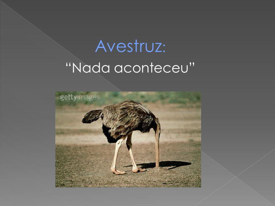 "Avestruz : ""Nada aconteceu"""