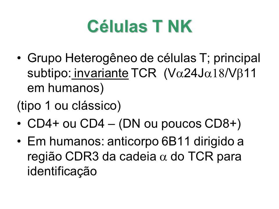 Células T NK Expressam marcadores de linfócitos T e células NK ; marcadores de ativação CD1d - glicolipídeos nas APC (  -GalCer) estimulam células T NK; ligante natural identificado (iGb3) em camundongos Sistema Imune Inato