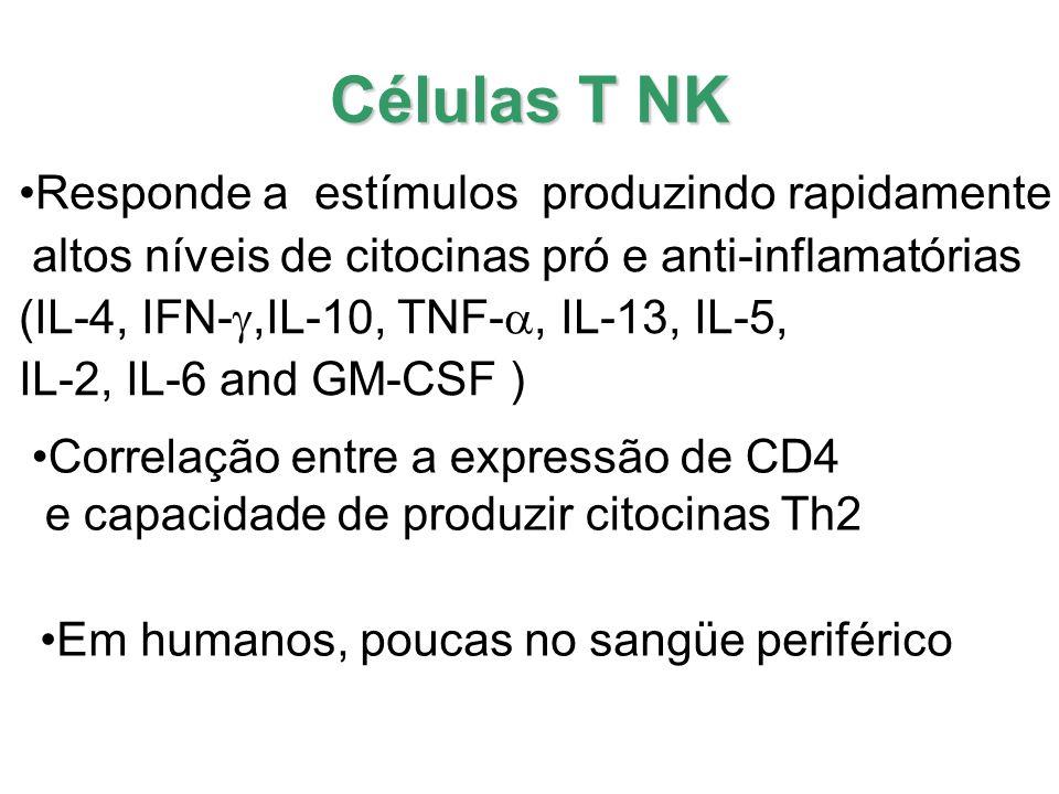 A diminuição das células T NK no sangue periférico poderia ser devido a migração dessas células para as vias aéreas.