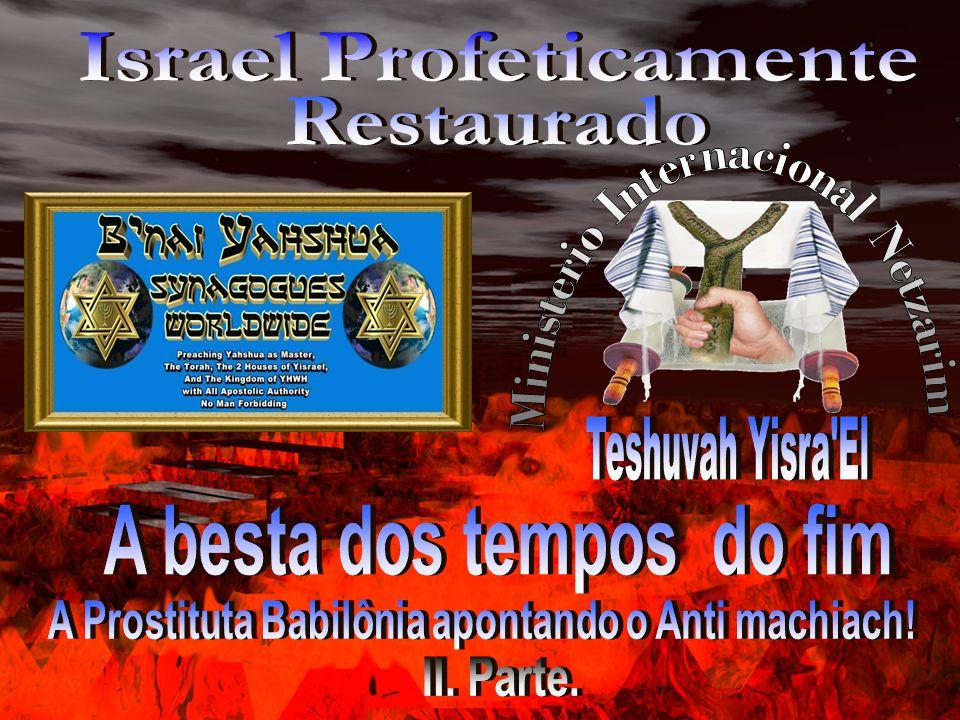 Nota: Todas as passagens, versos e notas colocadas neste material são da Tradução RSTNE As Escrituras Restauradas do Nome Verdadeiro - Pacto Renovado http://store.yourarmstoisrael.org/Qstore/Qstore.cgi?CMD=011&PROD=1102614256 Moshe Yoseph Koniuchowsky Rabbi e irmão : Moshe Yoseph Koniuchowsky The Propesied End Time Beast Rabbi : Simon Altaf de seu liro The Propesied End Time Beast www.yourarmstoisrael.org Traductor das Escrituras Restauradas do Nome Verdadeiro RSTNE