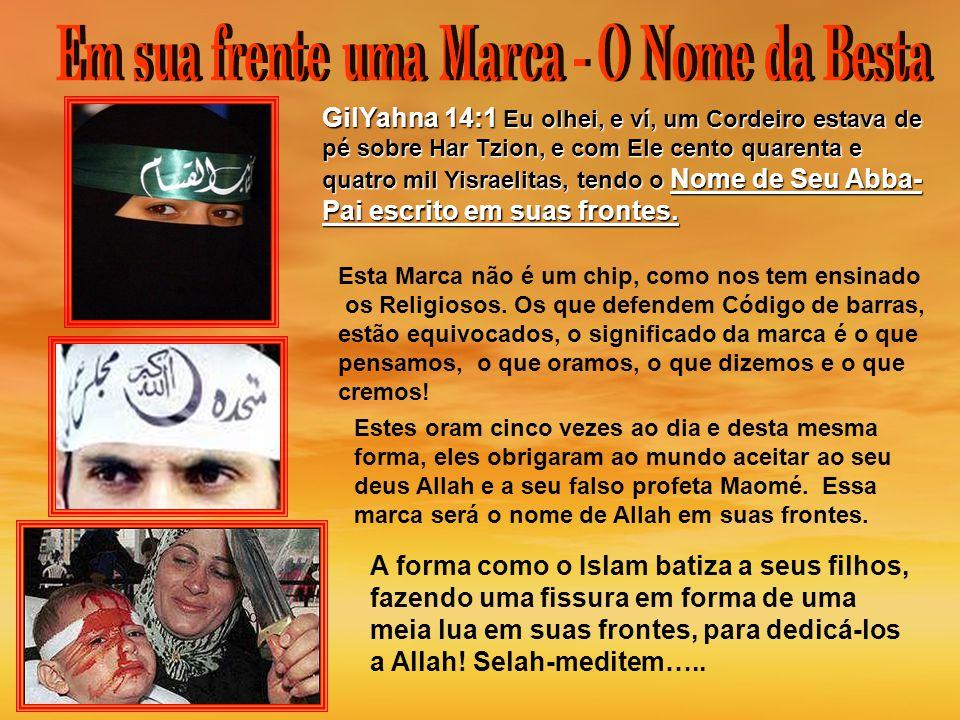 Un musulmán estadounidense que dijo estar molesto con Israel asesina a una mujer en un centro judío de Seattle GilYahna 14:1 Eu olhei, e ví, um Cordei