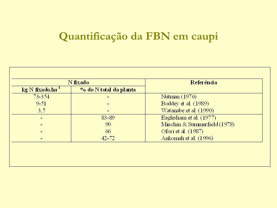 Quantificação da FBN em caupi