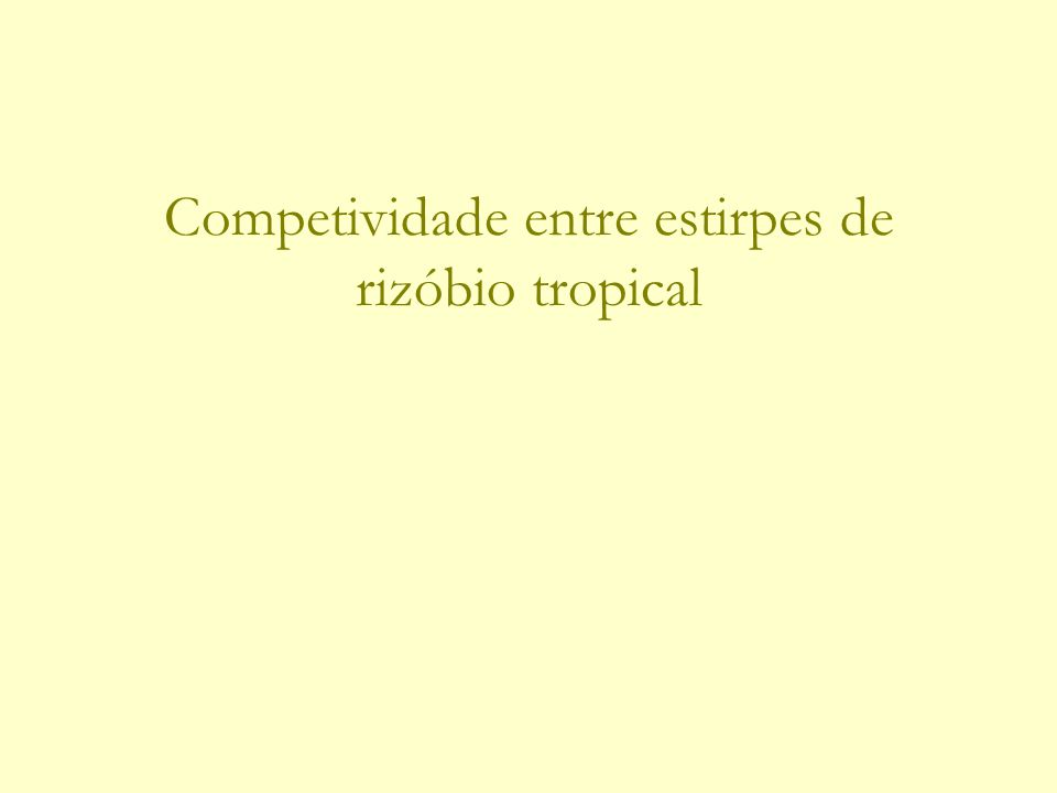 Competividade entre estirpes de rizóbio tropical