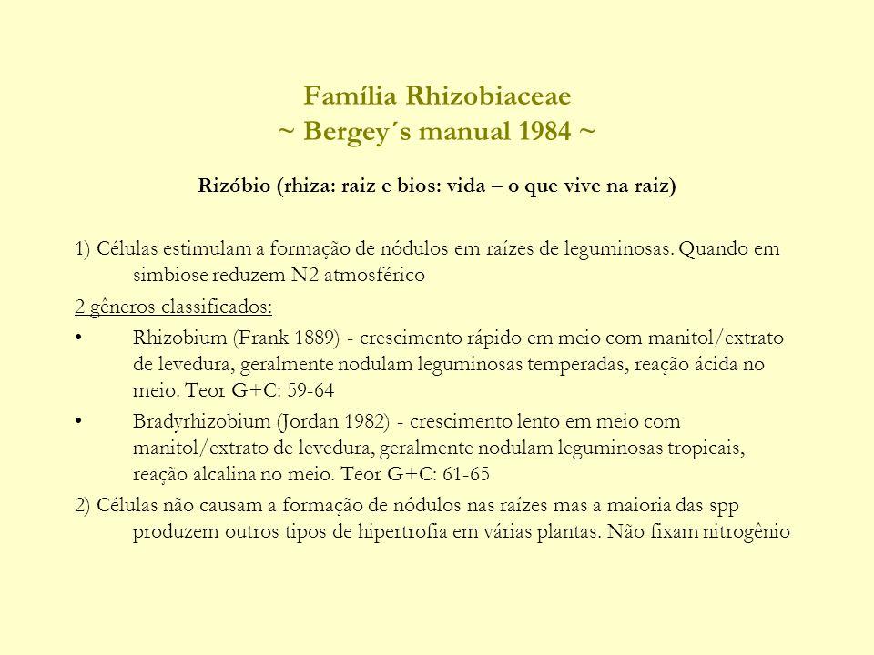 Família Rhizobiaceae ~ Bergey´s manual 1984 ~ Rizóbio (rhiza: raiz e bios: vida – o que vive na raiz) 1) Células estimulam a formação de nódulos em raízes de leguminosas.