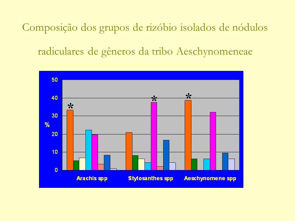 Composição dos grupos de rizóbio isolados de nódulos radiculares de gêneros da tribo Aeschynomeneae * * *