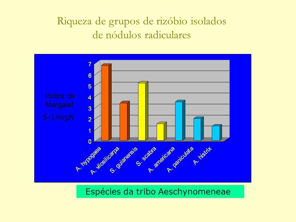 Espécies da tribo Aeschynomeneae Riqueza de grupos de rizóbio isolados de nódulos radiculares Índice de Margalef S-1/logN