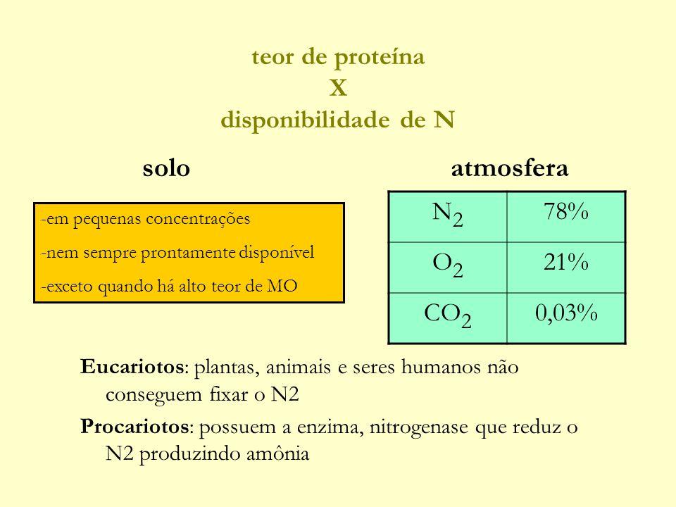 teor de proteína X disponibilidade de N Eucariotos: plantas, animais e seres humanos não conseguem fixar o N2 Procariotos: possuem a enzima, nitrogenase que reduz o N2 produzindo amônia N2N2 78% O2O2 21% CO 2 0,03% atmosferasolo -em pequenas concentrações -nem sempre prontamente disponível -exceto quando há alto teor de MO